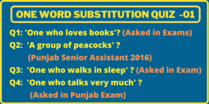 Some questions of One-Word Substitution